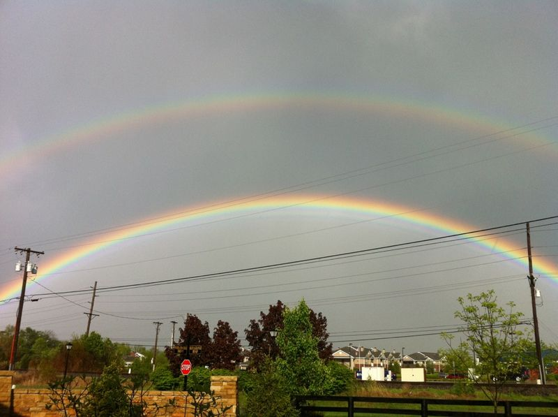 Double bow 2