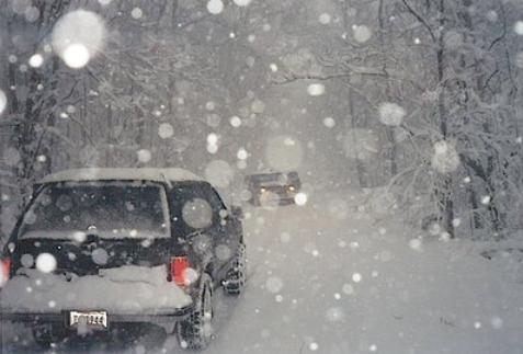 Bradley County Georgia 1993