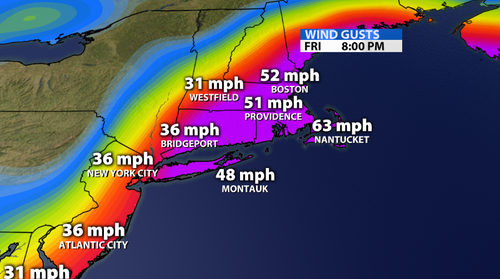Tropical Wind Gusts