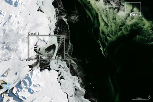 Antarctica_oli_2017064
