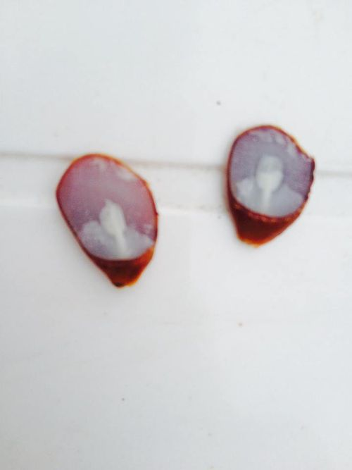 how to cut a persimmon seed to predict weather