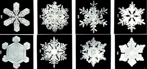Snow flake formation