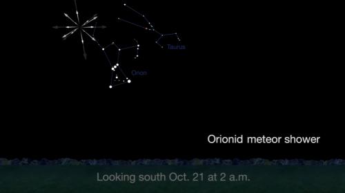 Orionid metor